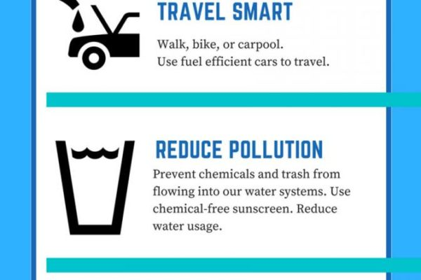 5 ways to protect coral reefs864x2160